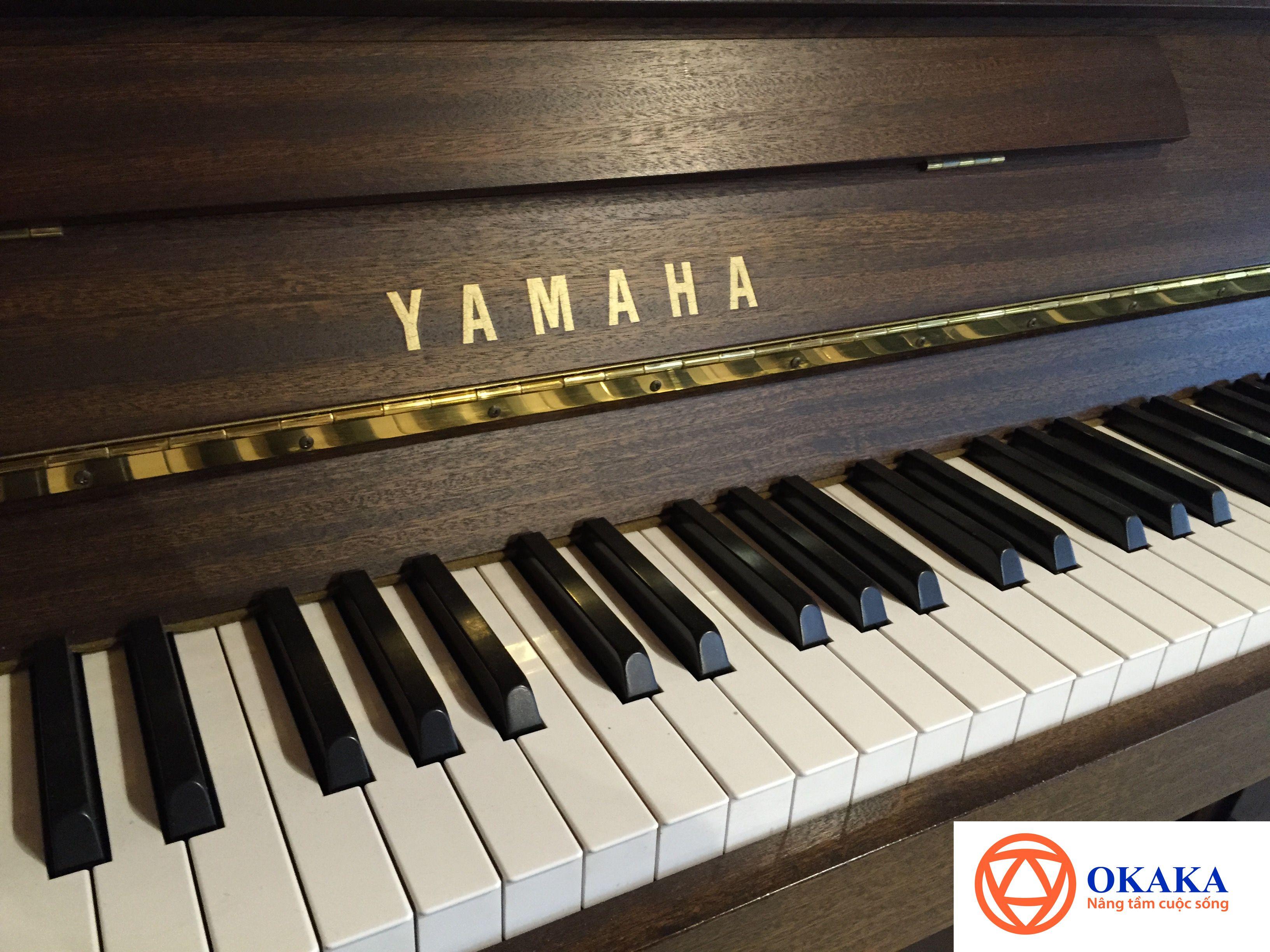 Và, bạn nghĩ đến phương án chọn mua đàn piano giá rẻ như một sự thay thế phù hợp. Thực tế, việc mua đàn piano cũ có rất nhiều vấn đề cần lưu tâm hơn so với việc bạn mua một chiếc đàn piano mới. Và bài viết này sẽ chỉ ra những ưu nhược điểm của đàn piano mới và đàn piano cũ mà bạn cần phải quan tâm để tự mình đưa ra quyết định khi muốn mua đàn piano.