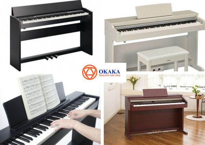 Nếu bạn mong muốn sở hữu một chiếc đàn piano điện chính hãng và đang đau đầu tìm cửa hàng bán đàn piano điện tại TPHCM uy tín, chất lượng với giá cả cạnh tranh thì hãy nhanh chóng đến với OKAKA Music - cửa hàng chuyên phân phối đàn piano điện chính hãng khắp cả nước, đặc biệt là ở khu vực miền Nam. Tại sao lại như vậy? Bài viết dưới đây sẽ cho bạn hiểu tại sao OKAKA Music lại là cửa hàng bán đàn piano điện mà bạn cần tìm.