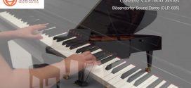 So sánh đàn piano điện Yamaha Clavinova CVP và Clavinova CLP