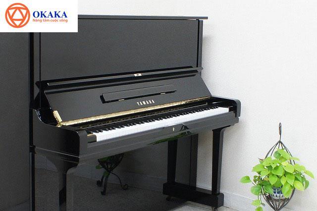 Hỏi: Chào OKAKA Music! Sắp tới em định mua một cây đàn piano cơ Yamaha cho con gái 8 tuổi. Em nghe nói có thể xác định xuất xứ và năm sản xuất đàn piano cơ Yamaha qua số serial nhưng lại không biết cách tra cứu cụ thể như thế nào. Em có thể xem số serial đàn piano Yamaha ở đâu và các con số ấy có ý nghĩa gì, chúng có ảnh hưởng đến giá và chất lượng đàn không? Mong OKAKA giải đáp giúp! Em xin cảm ơn! (Công Thành, TPHCM)