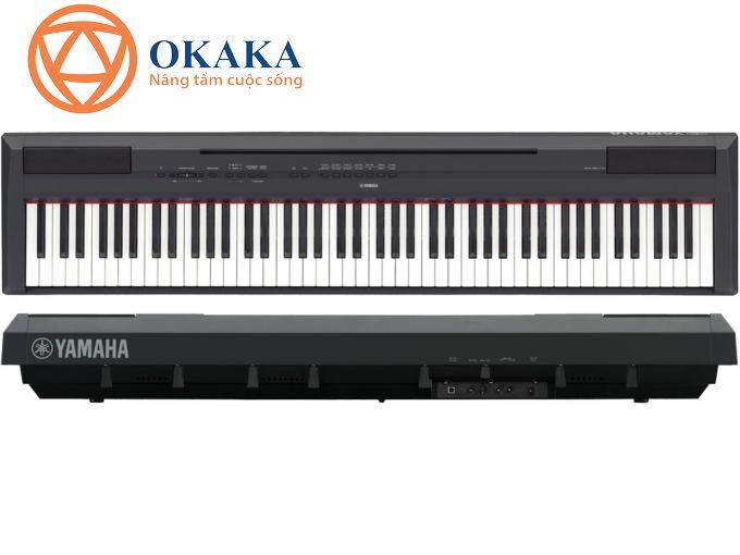 Thay thế cho model bán chạy trước đó của Yamaha là P-105, đàn piano điện Yamaha P-115 có nhiều tính năng tương tự P-105 và P-255..