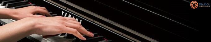 """Đàn piano điện Yamaha CLP-535 thuộc series đỉnh cao Clavinova CLP-500 được xem là model cải tiến hơn so với CLP-525 cơ bản. Bạn sẽ thích thú """"người anh"""" này bởi đây là model hội tụ nhiều tính năng thời thượng, khả năng mô phỏng âm thanh tuyệt vời và có kiểu dáng truyền thống của upright piano."""