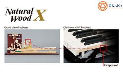 """Thưởng thức âm thanh và trải nghiệm độ nhạy phím tuyệt vời của đàn piano điện Yamaha CLP-645, bạn sẽ không ngớt """"tung bông tung hoa"""" và âu yếm dành """"những lời có cánh"""" cho model tuyệt vời trong dòng Clavinova này cho mà xem!"""