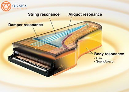 Bài viết này đề cập đến hai model đàn piano điện Yamaha CLP-625 và CLP-635 – cả hai đều có bộ cơ bàn phím GH3X và âm thanh tuyệt vời của CFX và Bosendorfer.