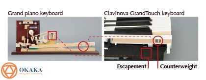 Trong bài này, chúng ta sẽ xem xét sự khác biệt giữa hai model đàn piano điện Yamaha hàng đầu trong dòng Clavinova CLP-600 series là CLP-675 và CLP-685. Trong khi cả hai đều tích hợp bộ cơ bàn phím mới mà Yamaha đã nghiên cứu trong 21 năm – GrandTouch, vẫn có sự khác biệt giữa hai model đàn piano điện này. Bảng dưới đây cho bạn thấy sự khác biệt chính trong một cái nháy mắt.