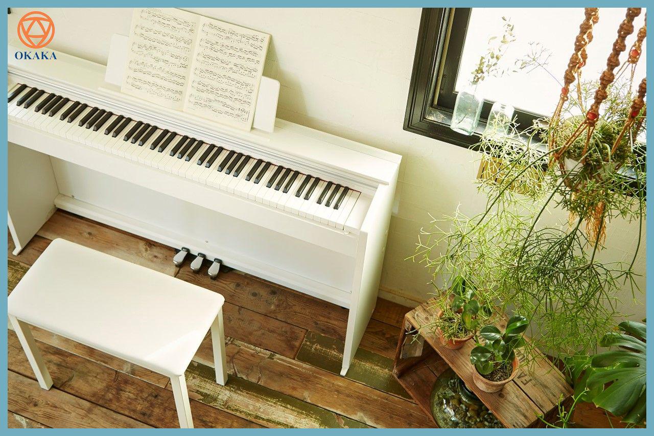 Nói đến việc tiết kiệm được nhiều cho ngân sách của bạn, model đàn piano điện Casio PX-870 mới ra mắt năm 2017 rất đáng để bạn chờ đợi. Quan trọng nhất vẫn là mua đàn piano điện Casio PX-870 ở đâu giá tốt, phải không bạn?