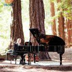 Những sự kiện tổ chức ngoài trời sẽ trở nên độc đáo hơn nhờ có sự hiện diện của cây đàn piano. Trong khung cảnh tuyệt đẹp như vậy lại được nghe tiếng đàn piano du dương thì còn gì bằng. Tuy nhiên, có một vài điều bạn cần lưu ý khi thuê đàn piano cho sự kiện ngoài trời.