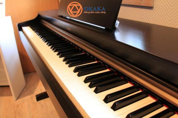 Trong bài viết này, OKAKA sẽ cùng bạn đánh giá đàn piano điện Yamaha YDP-143 cả về kiểu dáng, âm thanh và màn trình diễn. Song song đó cũng sẽ so sánh với các model đàn piano khác trong dòng Arius - cụ thể là Yamaha YDP-103, Yamaha YDP-163 và Yamaha YDP-V240
