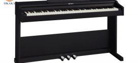 Thông số kỹ thuật đàn piano điện Roland RP-102