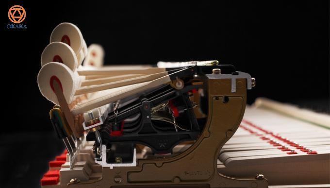 Với âm thanh tinh tế và vẻ đẹp lộng lẫy, đàn piano cơ Kawai GX-6 là nhạc cụ thích hợp cho các phòng hòa nhạc lớn nhất hoặc các studio chuyên nghiệp.