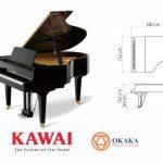 Để tăng cường sự thể hiện âm thanh tuyệt vời, đàn piano Kawai GL-40 được thiết kế theo kích thước phổ biến của một cây grand piano cổ điển với chiều dài 180cm. Cùng với những điểm đặc biệt khác trong thiết kế, GL-40 càng mang lại sự đặc sắc và phong phú cho màn trình diễn.