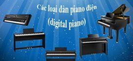 Các loại đàn piano điện (digital piano) thông dụng hiện nay