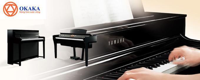 Hiểu về các thuật ngữ đàn piano điện, bạn sẽ biết cách phát huy tối đa khả năng của cây đàn để đáp ứng nhu cầu học và chơi đàn của bạn. Dưới đây là những thuật ngữ bạn cần biết, hy vọng sẽ hỗ trợ bạn ít nhiều trên hành trình khám phá cây đàn piano điện cũng như bộ môn piano.