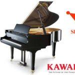 Vượt trội với âm thanh đặc biệt và độ nhạy phím tuyệt vời, đàn piano cơ Shigeru Kawai SK-3 luôn được các nghệ sĩ piano chuyên nghiệp trên toàn thế giới ngưỡng mộ.