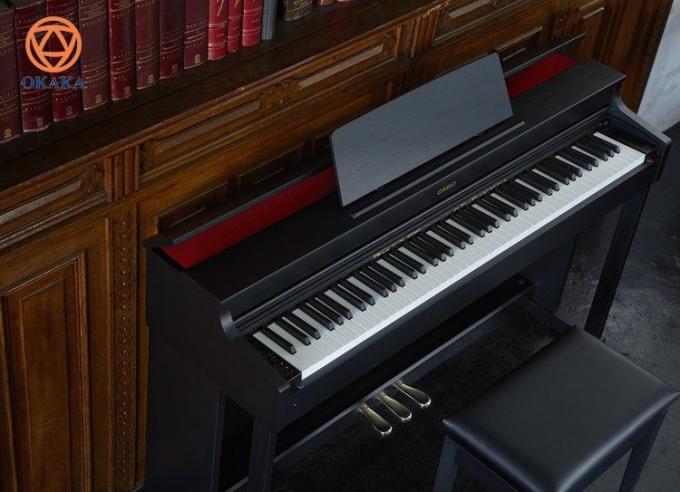 Casio đã trải qua một thời kỳ phục hưng lớn gần đây, và việc đầu tư lớn vào nghiên cứu và phát triển đã tạo ra một số sản phẩm đàn piano điện gây chú ý trong ngành công nghiệp âm nhạc. Và bạn sẽ thấy những cải tiến mới đó đã được Casio đưa vào các model mới thuộc dòng đàn piano điện Celviano AP, đặc biệt là 2 model mới ra mắt đầu năm 2018 là đàn piano điện Casio AP-270 và AP-470.