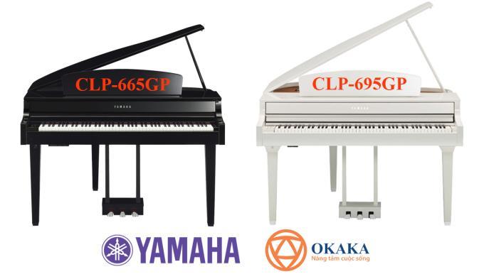 Yamaha CLP-695GP là model đàn piano điện có kiểu dáng grand piano thuộc dòng Clavinova của Yamaha mới ra mắt tại Hội chợ NAMM năm 2018. Hẳn bạn nghĩ rằng dòng CLP đã có model đàn piano điện Yamaha CLP-665GP mang kiểu dáng grand piano. Vậy thì 2 model này có gì giống nhau và model mới có những điểm đặc biệt đáng chú ý nào?