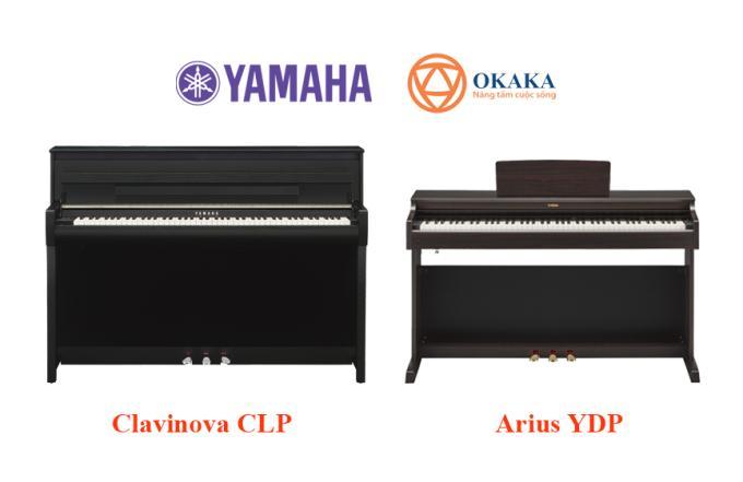 Clavinova và Arius là hai dòng đàn piano điện khác nhau được sản xuất bởi Yamaha. Hai dòng đàn này thoạt nhìn khá giống nhau, tuy nhiên, giữa chúng chắc chắn phải có những điểm khác nhau nào đó dẫn tới sự khác biệt về giá cả. Chúng ta hãy đi vào chi tiết hơn một chút để thấy rõ sự khác nhau giữa dòng đàn piano điện Yamaha Clavinova CLP và Arius YDP.