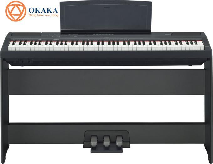 Là model tiêu biểu trong dòng P-series, đàn piano điện Yamaha P-115 với thiết kế hiện đại và nhiều tính năng độc đáo thực sự rất thích hợp với người mới chơi cũng như nghệ sĩ piano chuyên nghiệp.