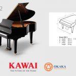 Đàn piano Kawai GX-2 kết hợp kiểu dáng tuyệt đẹp của một cây grand piano cổ điển với sự rõ ràng tinh tế của giai điệu chưa từng có ở những cây đàn khác có cùng mức giá. Là cây grand piano nhận được sự ca ngợi của quốc tế, GX-2 là sự lựa chọn phổ biến cho bất kỳ ngôi nhà, trường học, nhà thờ hay các studio nào.