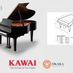Với âm thanh và độ nhạy phím nổi bật trong một kích thước linh hoạt, không có gì khó hiểu khi đàn piano Kawai GX-3 là lựa chọn ưa thích của các nghệ sĩ dương cầm chuyên nghiệp.