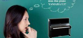 9 lý do tại sao bạn nên mua đàn upright piano Yamaha U3