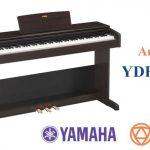 Là model bổ sung mới nhất cho dòng đàn piano điện gia đình, lại có giá rẻ nhất trong dòng Arius tính đến thời điểm này, không có gì khó hiểu khi đàn piano điện Yamaha YDP-103 được những người mới học, đặc biệt là các phụ huynh mua đàn cho bé quan tâm.