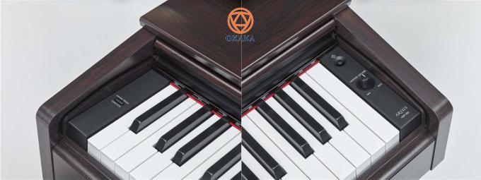 Yamaha YDP-103 là model đàn piano điện có giá thấp nhất trong dòng Arius hiện nay. Với sự bổ sung của đàn piano điện Yamaha YDP-103, dòng Arius giờ đây có nhiều model hơn để bạn lựa chọn: YDP-143, YDP-163, YDP-181... Tất nhiên, chọn model nào còn tùy thuộc vào ngân sách, trình độ kỹ năng chơi của bạn cũng như số lượng tính năng và chức năng bạn muốn có.