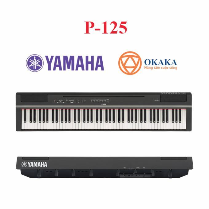 Đàn piano điện Yamaha P-115 là một trong những cây đàn piano điện xách tay phổ biến nhất của Yamaha. Tuy nhiên, nhà sản xuất danh tiếng Nhật Bản này đã quyết định nâng cấp sản phẩm và vào đầu tháng 4 năm 2018 đã giới thiệu model đàn piano điện Yamaha P-125 mới, thay thế P-115 và trở thành model tầm trung trong dòng P-series (Portable).
