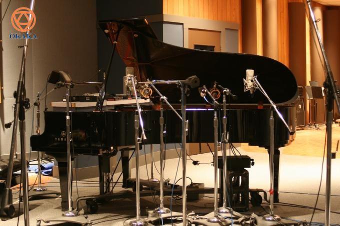 Hầu hết các cây đàn piano điện đều cung cấp nhiều loại âm thanh khác nhau. Hẳn bạn sẽ muốn biết đó là những âm thanh nào và sự đa dạng âm thanh trên đàn piano điện đến từ đâu. Bài viết này sẽ cung cấp cho bạn những thông tin thú vị đó.