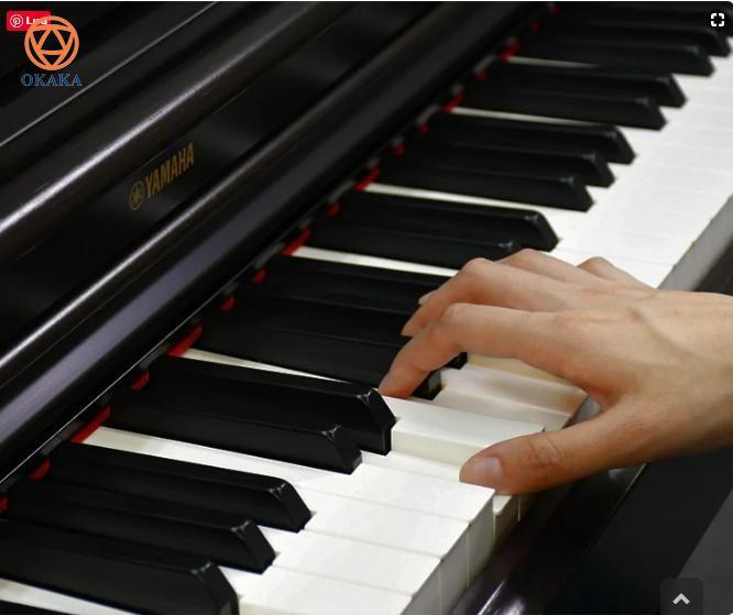 Hoàn hảo cho những người mới học và cả những người đam mê âm nhạc, đàn piano điện Yamaha YDP-164 dòng Arius không chỉ là người bạn đồng hành đáng tin cậy mà còn là sự bổ sung thanh lịch cho không gian sống của bạn. Nhạc cụ được chế tạo tinh xảo nhờ đỉnh cao của công nghệ và trình độ chuyên môn tiên tiến của Yamaha trong hơn một thế kỷ này chắc chắn sẽ không làm bạn thất vọng!